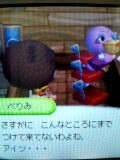 20070501_319468.JPG