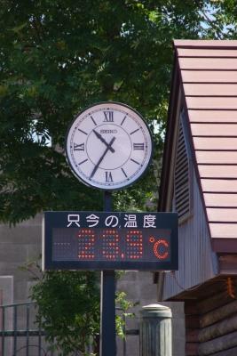 街頭温度計(タテ)