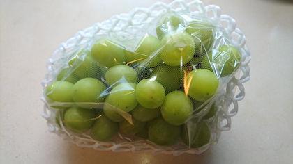 """20dcaa129e05a5 この時季は""""秋の味覚""""を頂戴することが多い。ことに産地で実った果物などは驚くほど立派である。"""