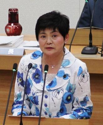2017年6月議会.jpg