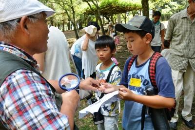 少年少女「奈良公園」?.jpg