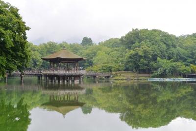 奈良の守りて.jpg