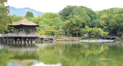 奈良公園シンポ.jpg