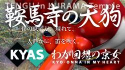 鞍馬寺の天狗 / kyas