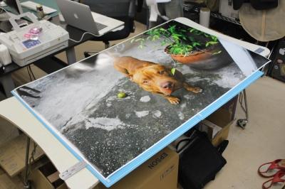 大型ポスター印刷写真02
