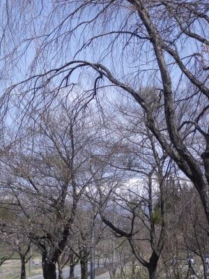 岩手山の方角