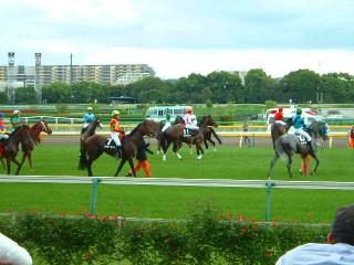 200504東京競馬