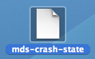 mds-crash-state