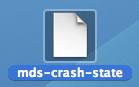 mds-crash-state