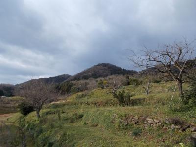 裏山の空も黒い雲が・・・