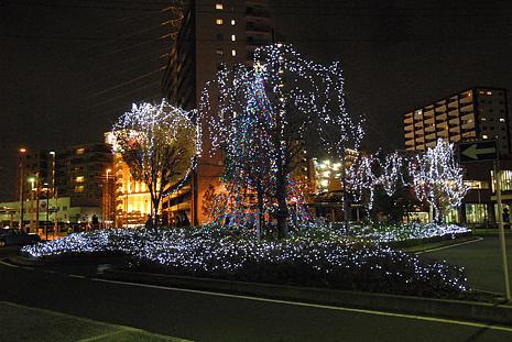 イルミネーション2010花岡さん撮影