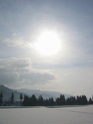 今日の新潟県南魚沼市は日差しがあたたかく、雪が解けてきています