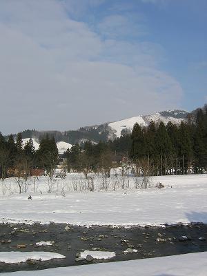 新潟県南魚沼市の水無川は春のような景色になっています