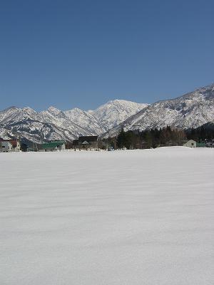 新潟県南魚沼市は青空が広がって、ぽかぽかとあたたかい一日になりました