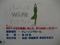 Wii Fit1