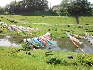 鯉のぼり流川運河