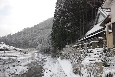 tsutsugafuyu1