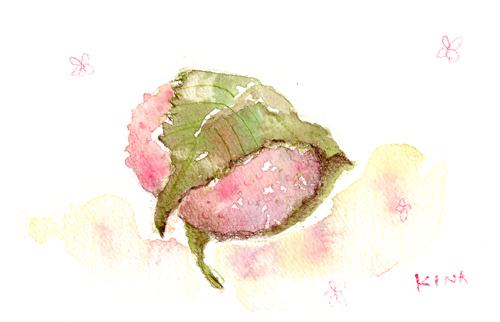 水彩教室 桜餅