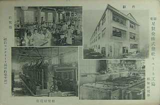 星製薬株式株式会社キニーネ工場