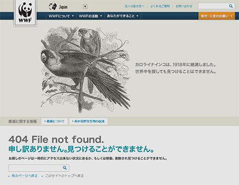 404|WWF