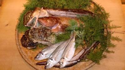 夏の高級魚