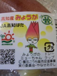 ミョーちゃん.JPG