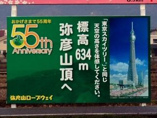 東京スカイツリーと同じ高さ
