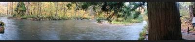 奥入瀬渓流3