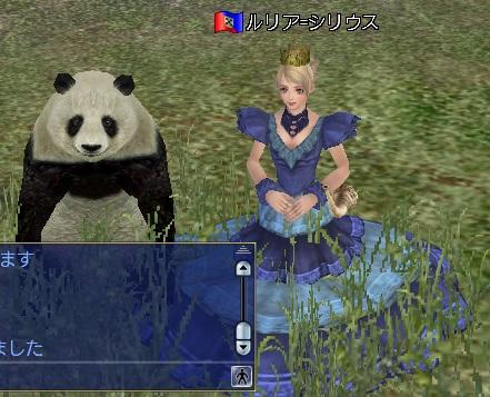 パンダと一緒に