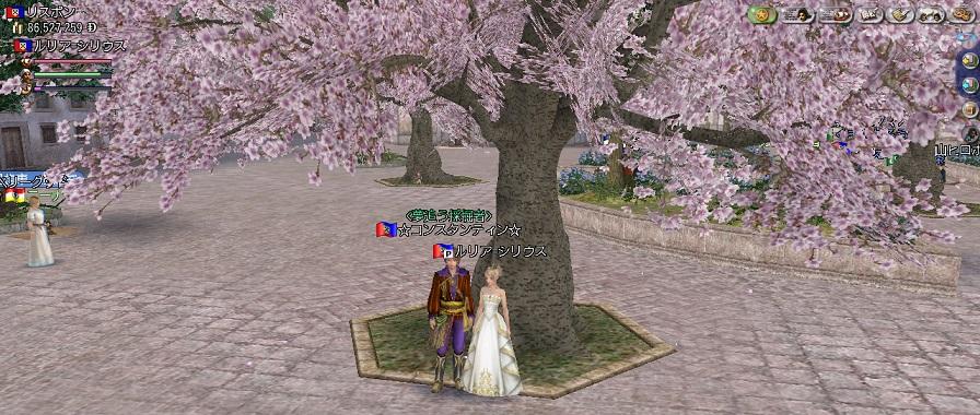 桜の木の下で、こんちゃんと
