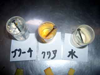 塩素酸水の実験07