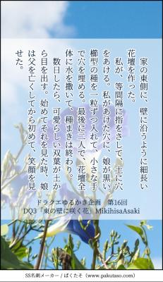 【DQ3】東の壁に咲く花