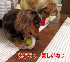おもちゃ大好き☆