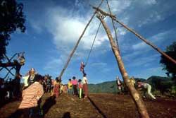 58号 アカ族のブランコ祭り�1