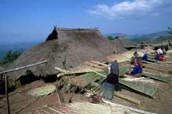 56号 アカ族の住居�1