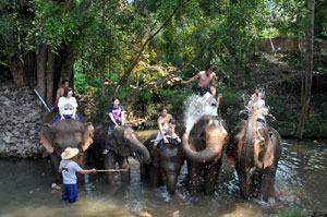 2.川の中では象はいつもソンクラーンモード!