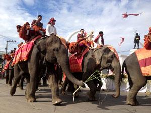 象たちの大行進は迫力があり一見の価値あり!!