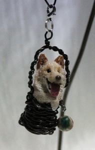 雑種犬しろくん(仮名)in籠