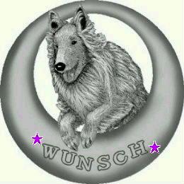 wunsch02.jpg