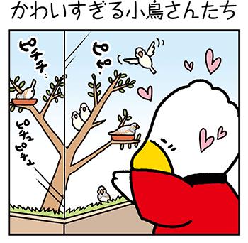 「かわいすぎる小鳥さんたち」