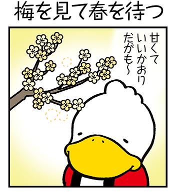 すがもんマンガ「梅を見て春を待つ」