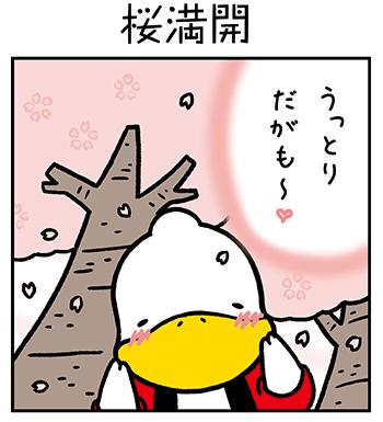 すがもんマンガ「桜満開」