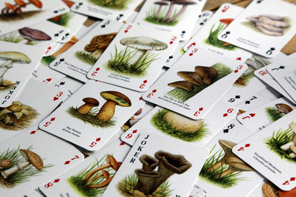 きのこトランプ「The Famous Mushrooms PLAYING CARDS」