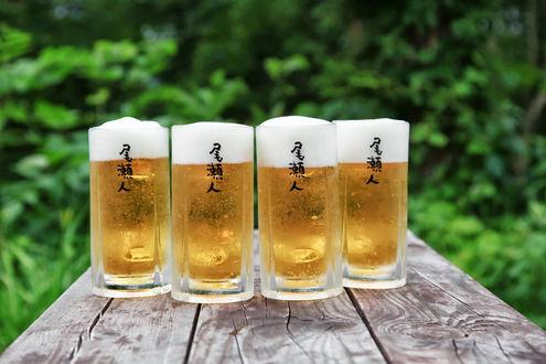 尾瀬沼の生ビール