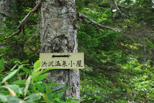 渋沢温泉小屋への道標