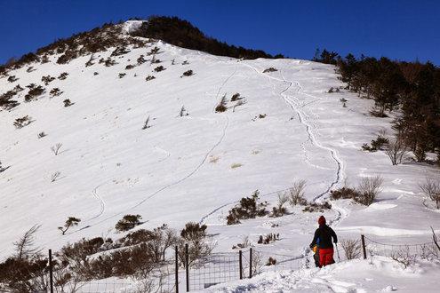 鷲ヶ峰登スノートレッキング