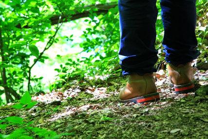 ゴローの登山靴