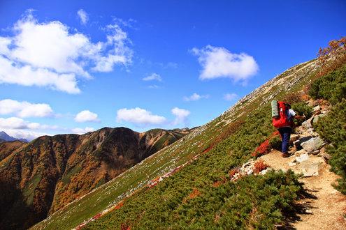 大天井岳までの登山道