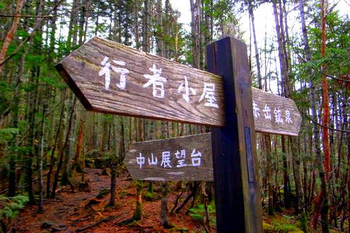 南八ヶ岳 南沢・北沢山歩 道標