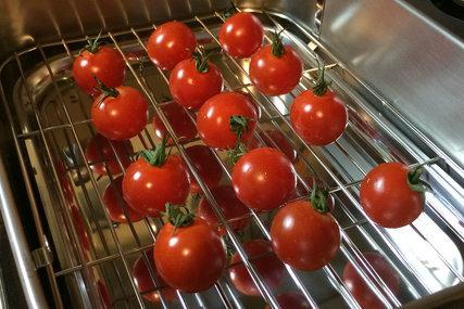 プチトマトとセット